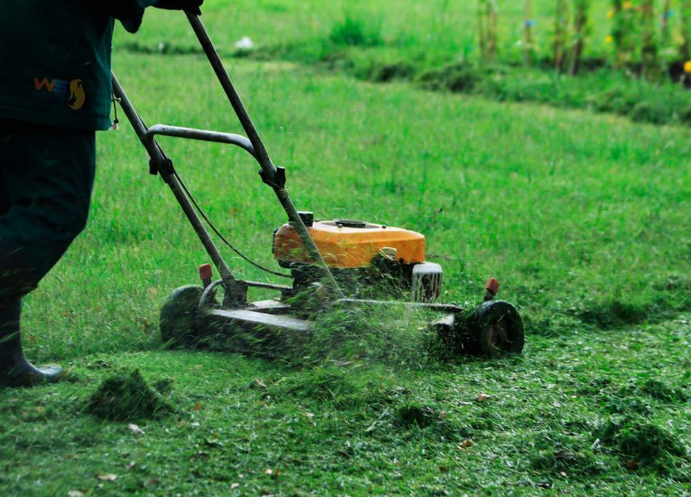 Mantenimiento de poda y jardinería