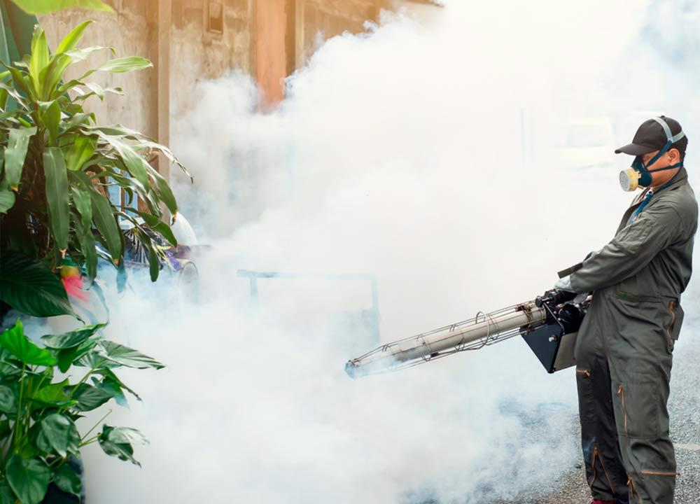 Manejo integrado de plagas (fumigaciones)